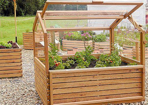 In der Kombi Hochbeet mit Frühbeet-Aufsatz sind die erhöhten Anbauflächen Garanten für eine gute Ernte. Foto: Gartenfrosch