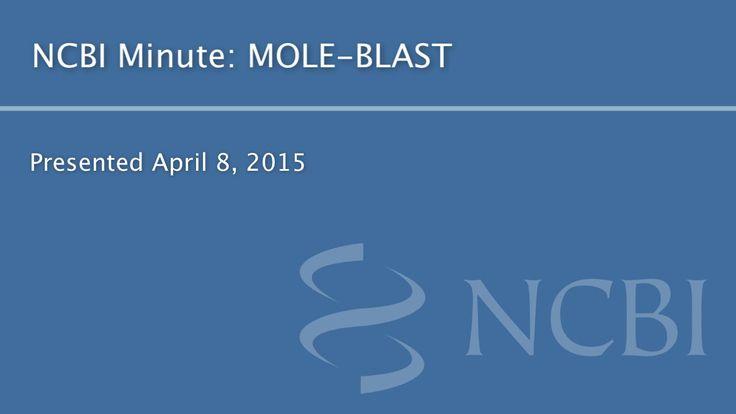NCBI Minute: MOLE-BLAST