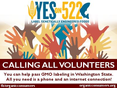 Do you have time to help persuade Washington State voters to cast their ballots on Nov. 5 in favor of I-522? One of the easiest, and most effective ways you can help is to become a phone banker. All you need is a phone and an internet connection. It won't cost you a dime. We'll supply training, scripts – everything you need. You can make the calls anytime that's convenient for you, from your own home.  Click pic for link & info~
