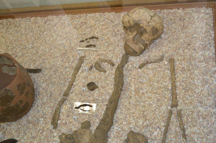 Tomba del guerriero umbro del VI sec. a.C., particolare
