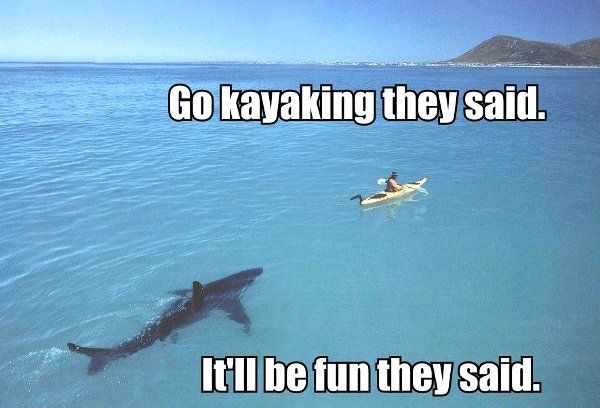 go kayaking they said it'll be fun they said