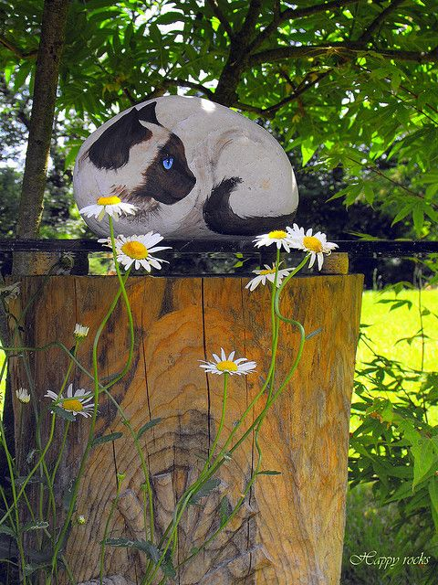 Painted rock cat... pretty real looking outdoors.