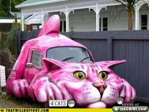 Giant cat car