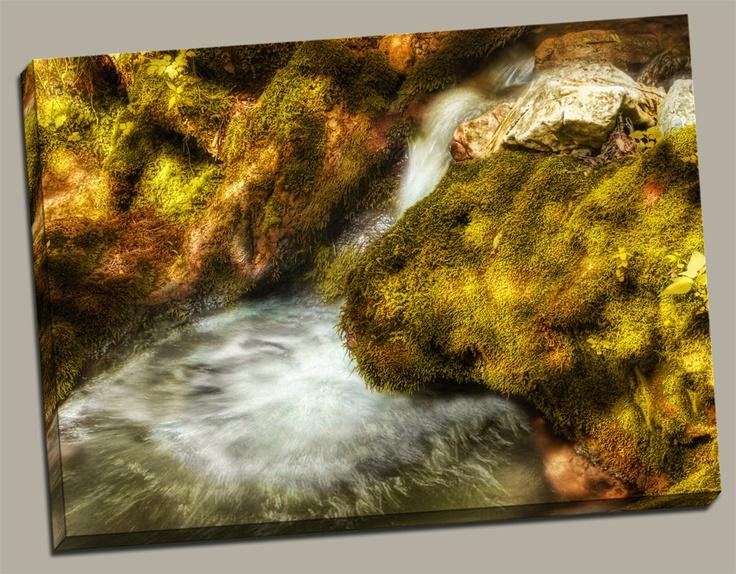 """Rejuvenation Pond"" www.romansolarphotography.com"