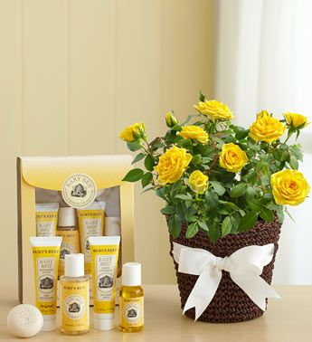 49 best new baby gifts ideas images on pinterest baby gifts burts bees baby bee gift set yellow rose plant paired with a burts bees baby negle Images