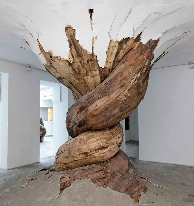 he: organic wood sculptures henrique oliveira photo aurelien mole