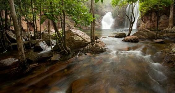 Florence Falls, Litchfield National Park -  Spring-fed waterfalls flow from a plateau, creating beautiful, crocodile-free swimming holes, and outliers of imposing, weathered rocks rise from grassy plains dotted with massive termite mounds.