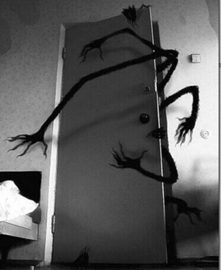 Гифка про паука на стене отзывам лицо