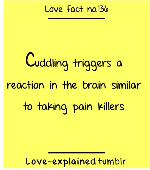 Love facts / I think it also kills heartaches (cuddle,love,pain killer,pain,suffer,heartbreak,breakup,foreplay,fact,facts,relatable,science)