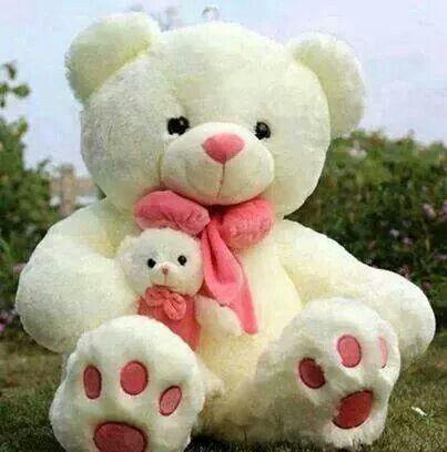 Big Size Teddy Bear