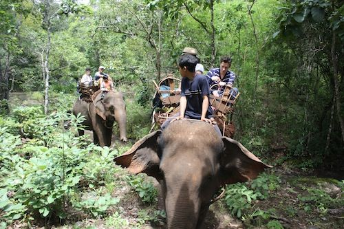 Mondulkiri Elephant Trekking, Cambodia