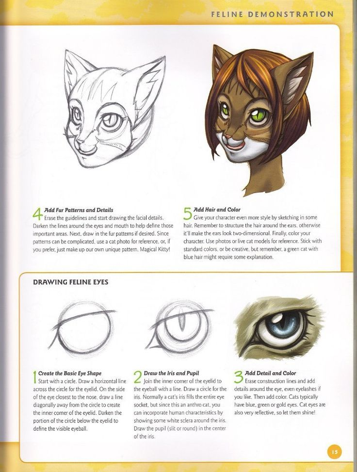 64 best making furries images on Pinterest | Drawing stuff, Drawing ...