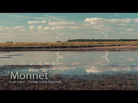 'Monnet' - A salt marsh - Tåsinge, Denmark... - YouTube