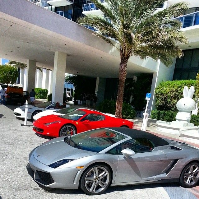 Exotic And Luxury Cars For Rent In: 96 Best Lamborghini Rental Miami Images On Pinterest