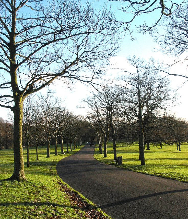 Roundhay Park is a gorgeous place to stroll around, simply a bus ride away (/car if you're snazzy). Lovely for picnics and days out with your chums. They hold an amazing bonfire night so check it out!
