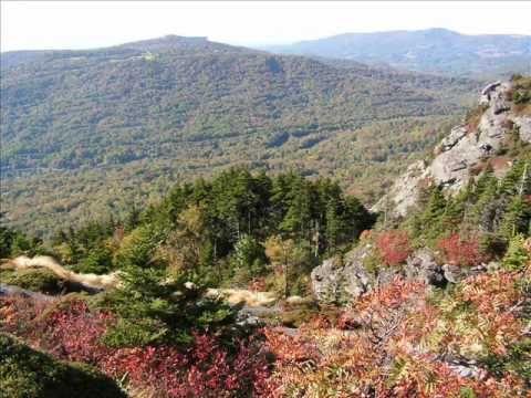 Carolina State Scenery