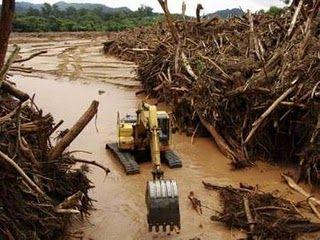 Deforestacion.