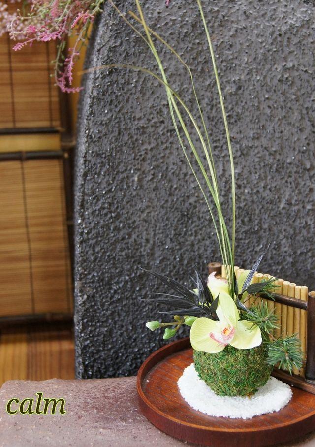 送料無料*黄緑蘭のちいさな苔玉