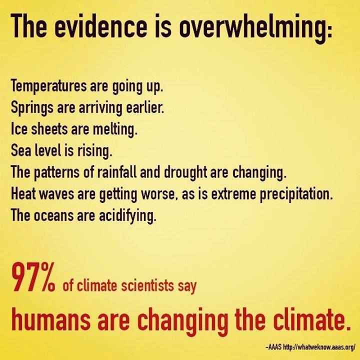 Greenpeace Climate Change Denial In Critical Thinking - image 5