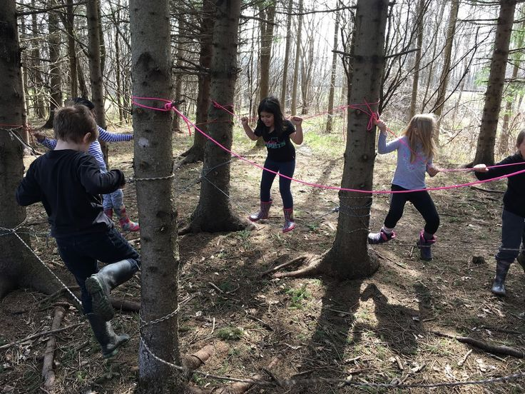What items could be in a Forest School Kit? - Child and Nature Alliance of Canada