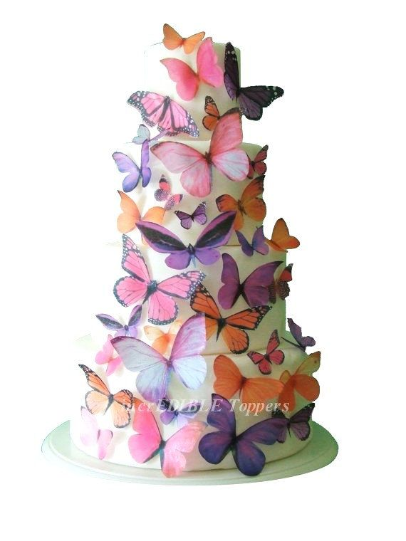 Cake Art Supplies Caringbah : 227 best Butterfly Party Ideas images on Pinterest ...