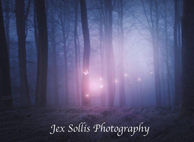 Forest Butterflies Digital Backdrop  https://www.etsy.com/au/shop/JexSollisPhotography  #art #photography #blue #pink #digitalbackdrop #digitalbackground #forestbackdrop #photoshop #composite