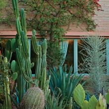 26 best Home Landscaping Ideas images on Pinterest Landscaping
