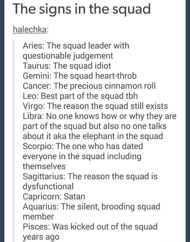 And we have... A squad leader with questionable judgement, satan, and me- the best part of the squad tbh