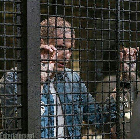 New pic of Wentworth miller Prison break season 5 @wentworthmilleractorwriter #wentworthmiller #michaelscofield #prisonbreak