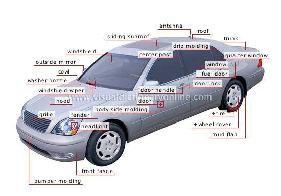 Transport Body Parts : Best images about transport vocabulary on pinterest
