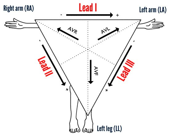 how to detect lead in the body