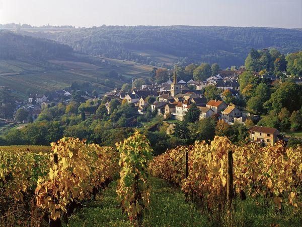Côte d'Or, Burgundy, France  Photograph by Günter Gräfenhain, SIME