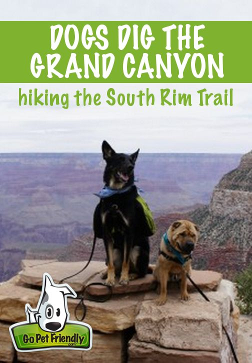 It's common knowledge among pet travelers that our national parks are not pet…