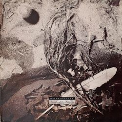 David Sylvian – 'Secrets of the Beehive'. Art Direction by Vaughan Oliver at V23
