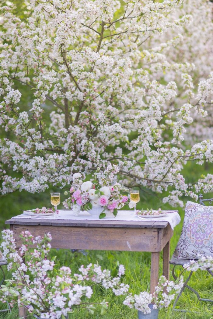 Luna Love | We love the idea of dining among spring blossoms!  Photo by Georgianna Lane for Floret Flower Farm ☽