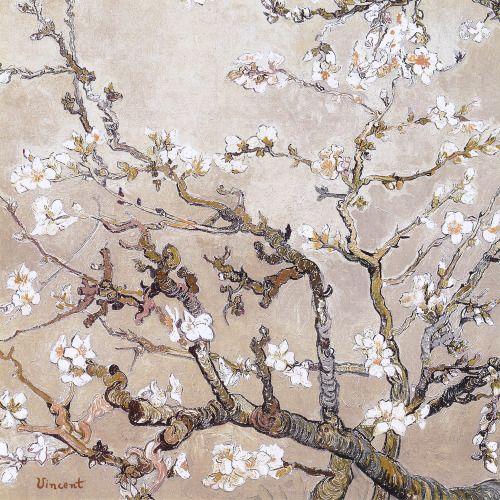 cinque-del-mattino:  Almond Branches In Bloom, San Remy | Vincent Van Gogh