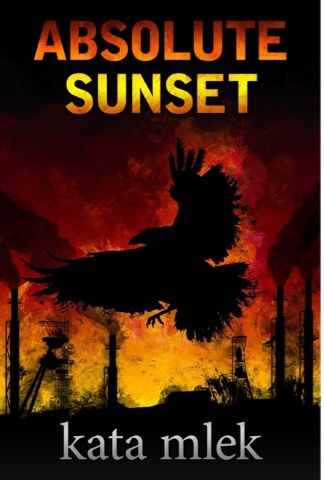 Busy Brunette's Bookshelf: Book Review: Absolute Sunset
