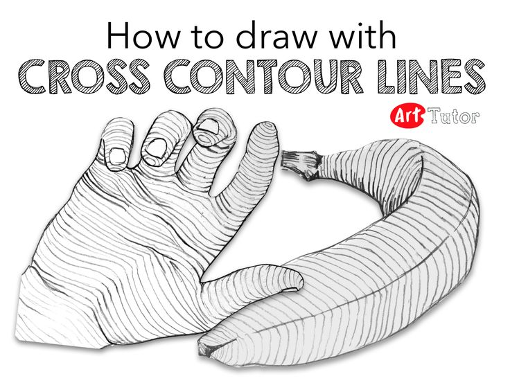 Contour Line Drawing How To : Best contour drawings ideas on pinterest line