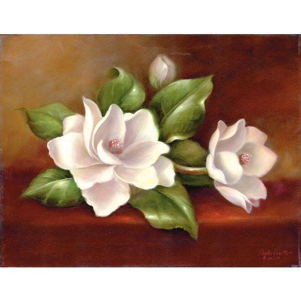 magnolias flowers - Google Search