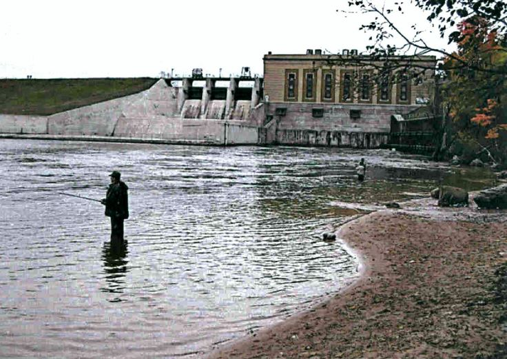 1000 images about salmon steelhead fishing nw michigan for Manistee river fishing report tippy dam