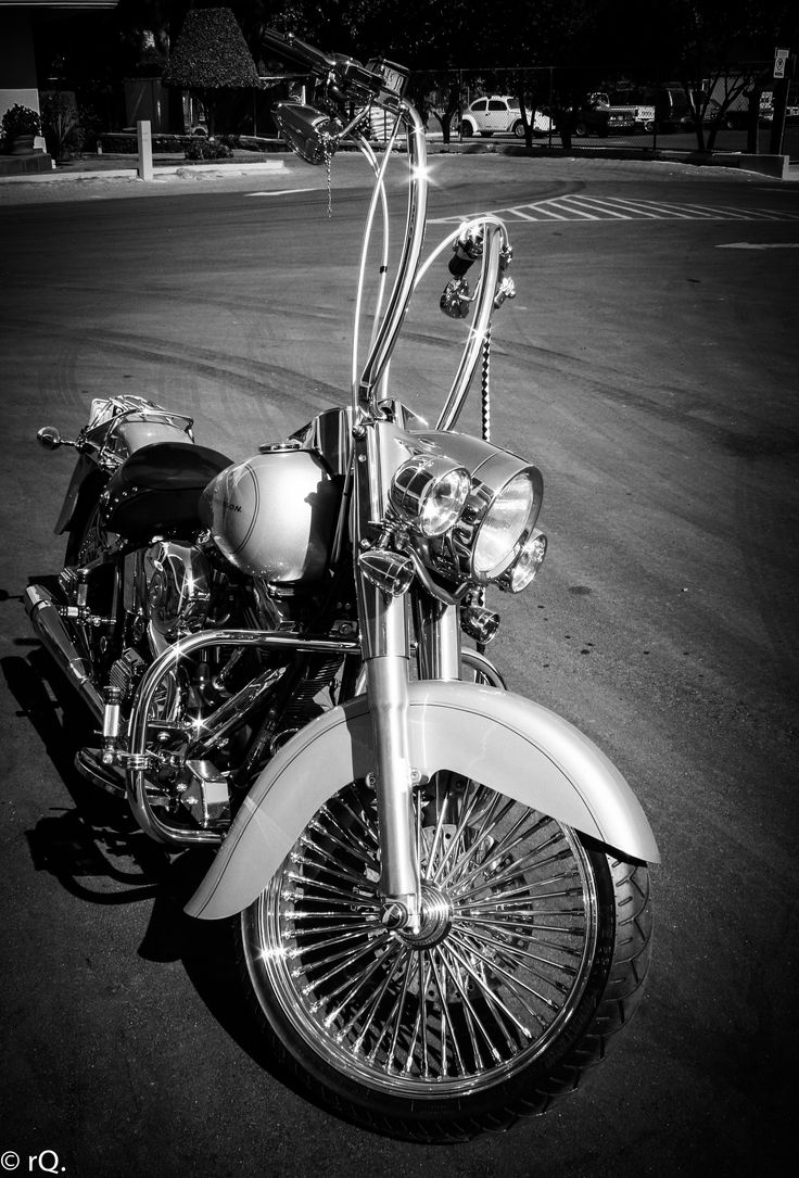 Softail With Flying Apes