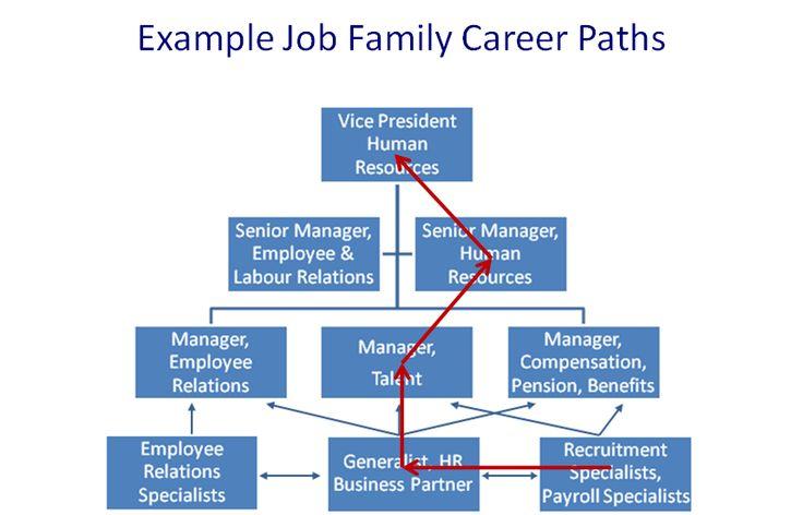 Hr job family career path hr pinterest paths search