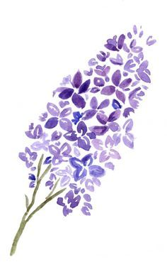 17 Best Ideas About Lilac Tattoo On Pinterest Lavender