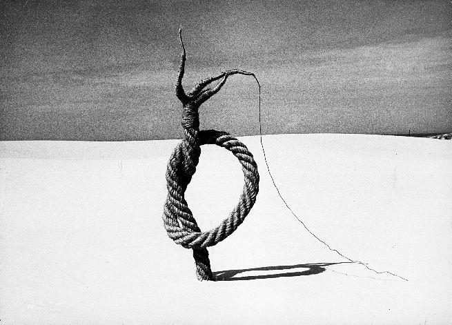 Magdalena Abakanowicz - The rope on Baltic  dune. Magdalena Abakanowicz - ogólnopolski interdyscyplinarny konkurs artystyczny - zgłoszenia przyjmujemy do 31 lipca 2015 r. Zapraszamy!  Zdjęcia dzieł - Madryt Retro, Reina Sofia, 30 katalog do wystawy. #MagdalenaAbaknowicz #dzieła #rzeźby #instalacje #abakany http://artimperium.pl/wiadomosci/pokaz/539,muza-2015-magdalena-abakanowicz-regulamin-konkursu-i-karta-zgloszeniowa#.VYXU6fntmko