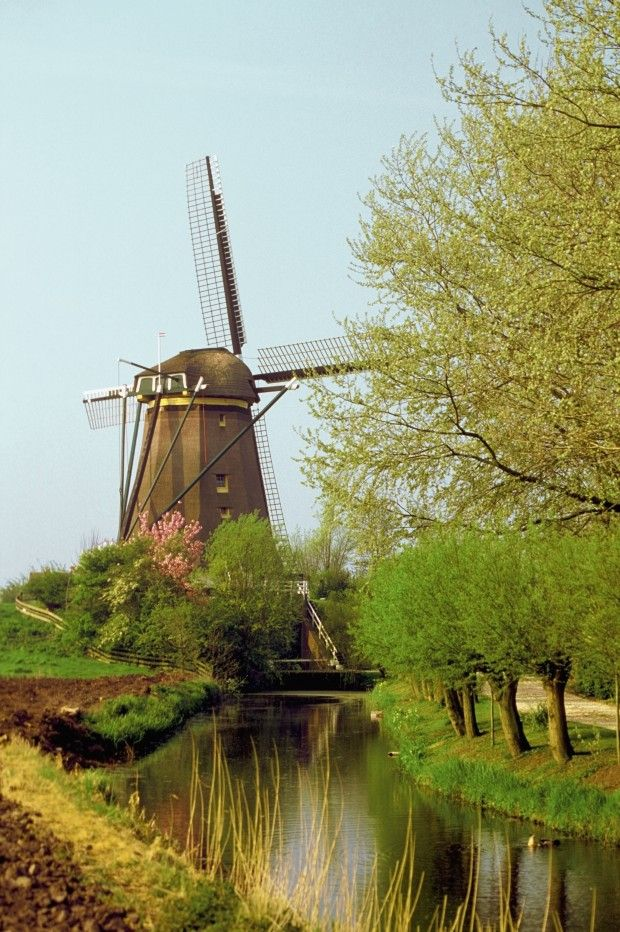 Discover Northern Europe - Edam, Netherlands