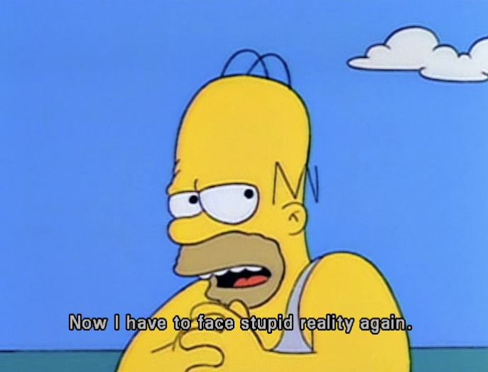 Now I have to face the stupid reallity again, Simpsons ...
