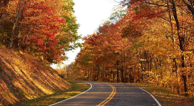 Favorite Virginia Fall Vacations