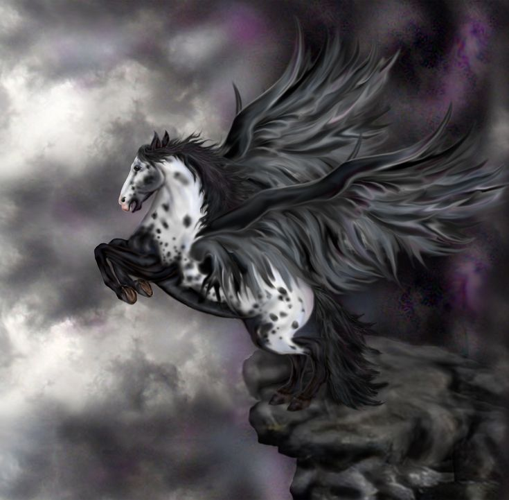 Rockwing, over-stallion of Mountain Herd.If you like pegasi, check out the Guardian Herd book series. http://www.jenniferlynnalvarez.com/p/the-winged-herds-of-anoch.html   http://fc01.deviantart.net/fs12/f/2006/319/1/3/Andalusian_Pegasus___Windflowa_by_Quicksilverfury.jpg