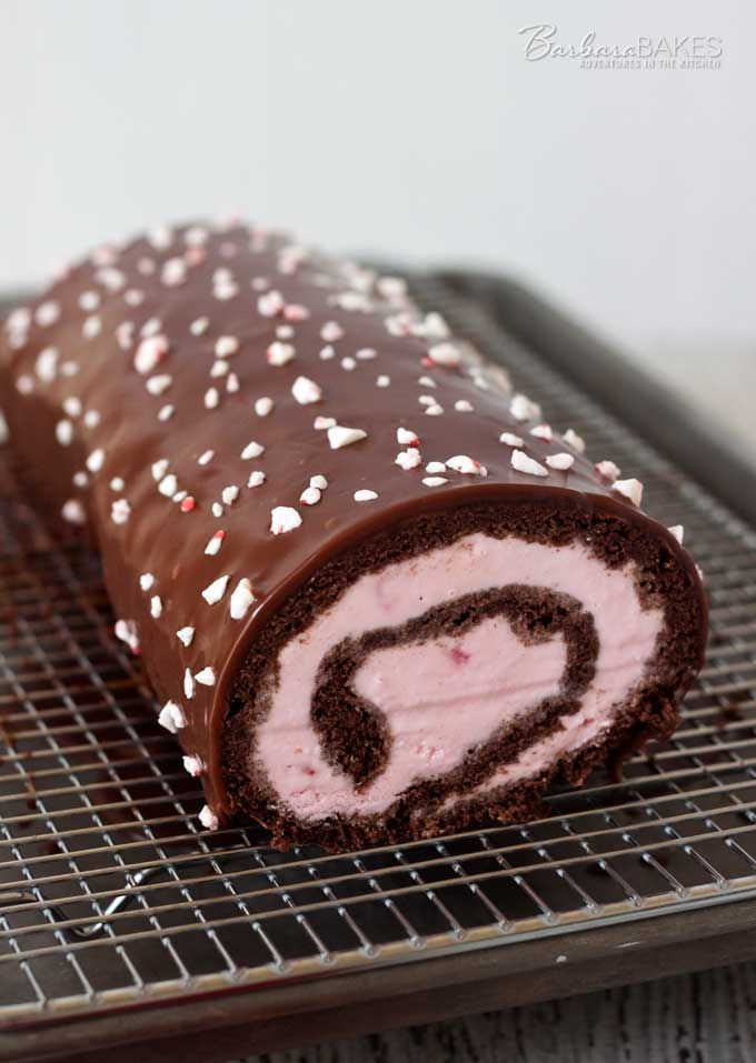 Chocolate Peppermint Ice Cream Cake Roll - a perfect holiday dessert.