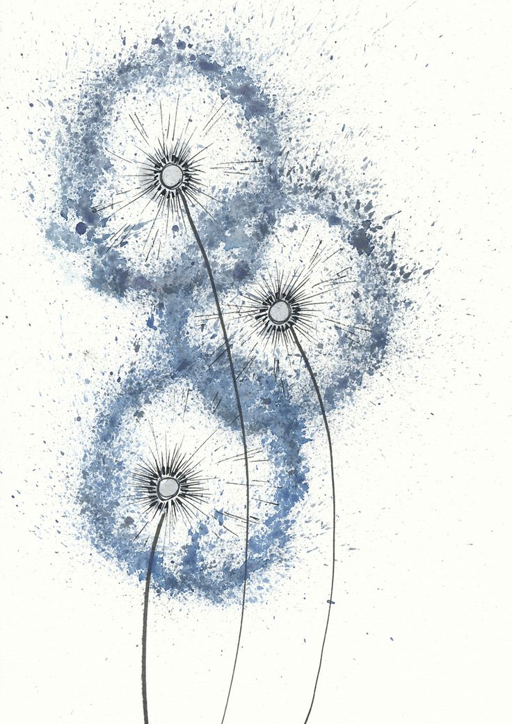 blaue pusteblume | lichtliebe